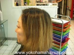 Kiyomi DSCN4563