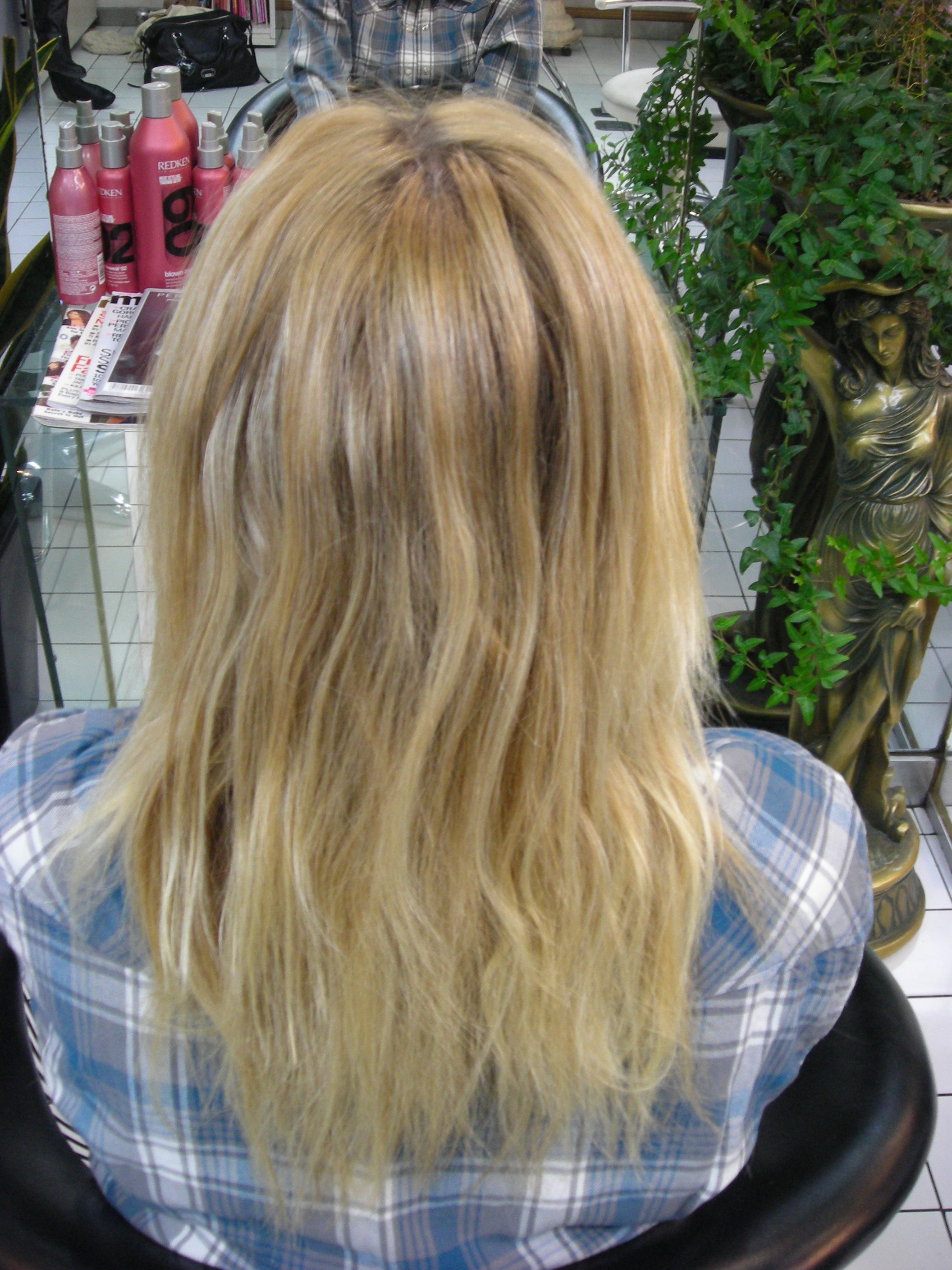 Platinum Blonde Hair With Brown Lowlights Lowlights to give adeienne